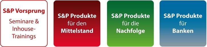 S&P Beratungsleistungen - S&P Checks